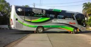jasabuspariwisata-bus-dewi-sri-pariwisata-bigbus