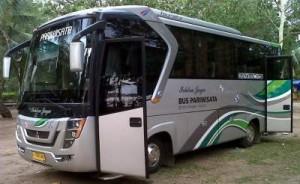 jasabuspariwisata-bus ichtra jaya-medium