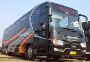 jasabuspariwisata-bus-pariwisata-andromeda