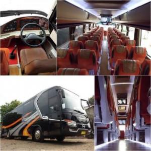 jasabuspariwisata-bus-pariwisata-andromeda-bigbus