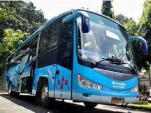 Bus Pariwisata Armada Jaya Perkasa – Sewa Bus Pariwisata Armada Jaya Perkasa