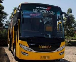 jasabuspariwisata-bus-pariwisata-beebuzz