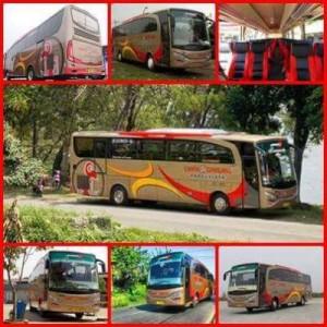 jasabuspariwisata-bus-pariwisata-cahya-gemilang-interior