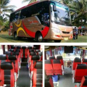 jasabuspariwisata-bus-pariwisata-cahya-gemilang-medium