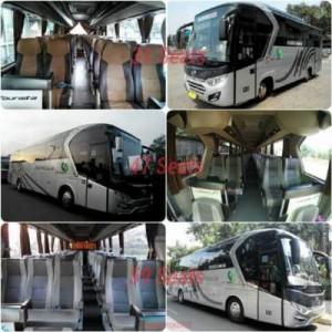 jasabuspariwisata-bus-city-trans-utama-unit