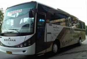 jasabuspariwisata-bus-pariwisata-desiana-marcopolo