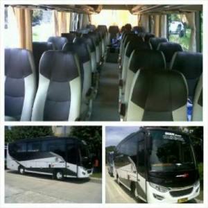 jasabuspariwisata-bus-pariwisata-dian-trans-interior-medium