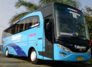 jasabuspariwisata-bus-pariwisata-discovery