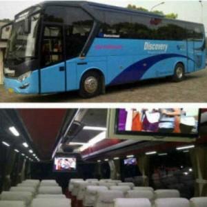 jasabuspariwisata-bus-pariwisata-discovery-bigbus
