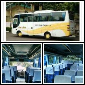jasabuspariwisata-bus-pariwisata-esem-abadi-29seat
