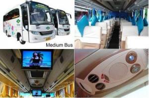 jasabuspariwisata-bus-pariwisata-kanaya-trans-wisata-medium