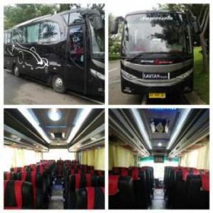 jasabuspariwisata-bus-pariwisata-lautan-wisata