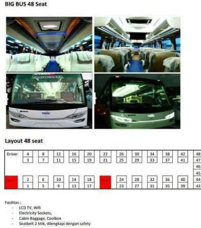 jasabuspariwisata-bus-pariwisata trac-bigbus-denah
