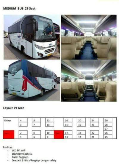 jasabuspariwisata-bus-pariwisata-trac-medium-denah