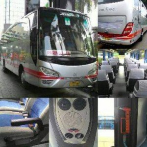 jasabuspariwisata-bus-pariwisata-white-horse-bigbus