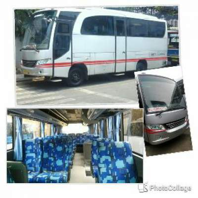 jasabuspariwisata-bus-pariwisata-white-horse-medium-18s