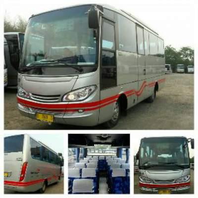 jasabuspariwisata-bus-pariwisata-white-horse-medium-27s