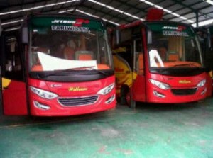 jasabuspariwisata-bus-pariwisata-william-medium