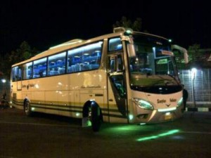 jasabuspariwisata-bus-pariwisata-scorpion-holidays-night