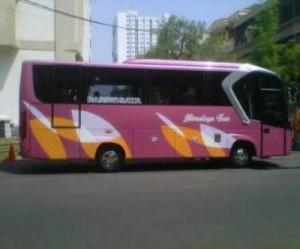 jasabuspariwisata-bus-pariwisata-himalaya-trans