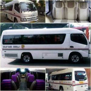 jasabuspariwisata-bus-pariwisata-surya-bali-elf