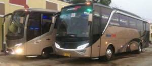 Bus Pariwisata Sekawan Trans – Sewa Bus Pariwisata Sekawan Trans
