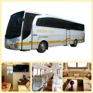 jasabuspariwisata-bus-pariwisata-mewah-weha-one