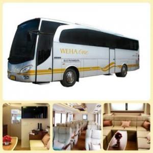 jasabuspariwisata-bus-pariwisata-premium-weha-one