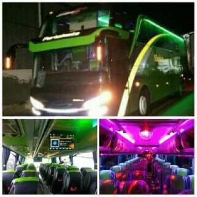 jasabuspariwisata-bus-pariwisata-shelota-wisata-shd-interior