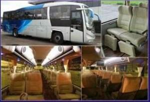 jasabuspariwisata-bus-pariwisata-super-executive-aerotrans