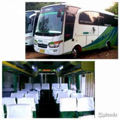 jasabuspariwisata-bus-pariwisata-green-white-medium