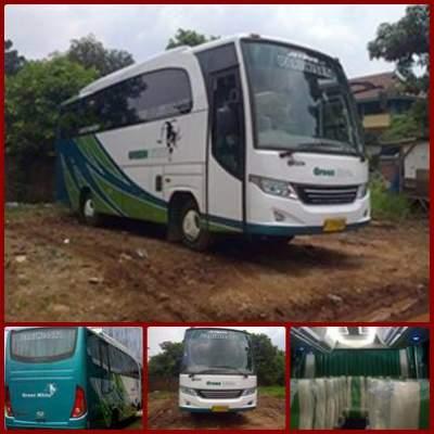 Bus Pariwisata Green White – Sewa Bus Pariwisata Green White