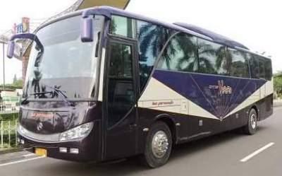 Bus Pariwisata Otis Verara – Sewa Bus Pariwisata Otis Verara