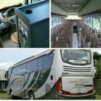 jasabuspariwisata-bus-pariwisata-premium-passion-interior