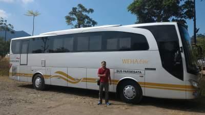 Bus WEHA One – Sewa Bus WEHA One