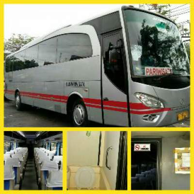 jasabuspariwisata-bus-pariwisata-toilet-white-horse