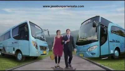 Keunggulan Sewa Bus Big Bird di Agen Terpercaya