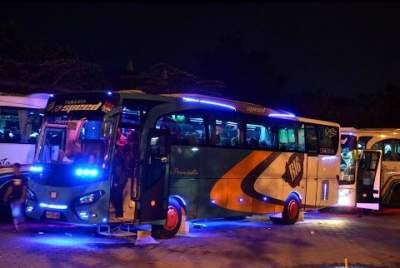 jasabuspariwisata-berbagai-informasi-mengenai-bus-pariwisata-strobo-bus-pariwisata-b16