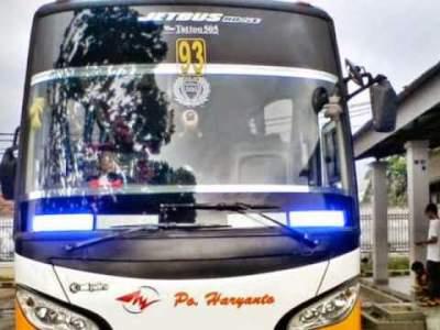 jasabuspariwisata-berbagai-informasi-mengenai-bus-pariwisata-strobo