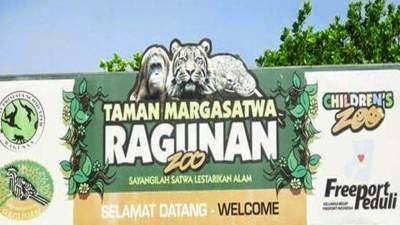 Berwisata Ke Kebun Binatang Ragunan Dengan Sewa Bus Pariwisata