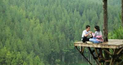 jasabuspariwisata-habiskan-liburan-anda-di-tempat-wisata-the-lodge-maribaya-sky-tree