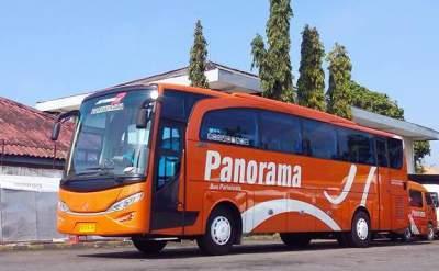 jasabuspariwisata-jalan-jalan-asyik-petik-strawberry-di-bandung-bus-panorama