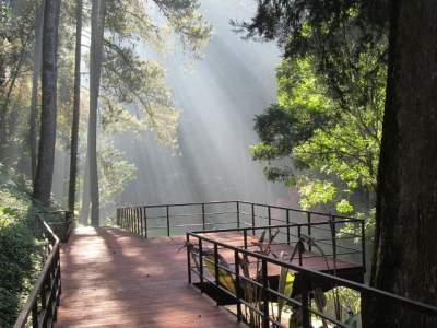jasabuspariwisata-menikmati-keeksotisan-taman-wisata-maribaya-sky-bridge