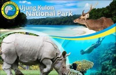 jasabuspariwisata-objek-wisata-banten-yang-eksotis-taman-nasional-ujung-kulon