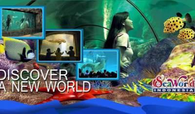 jasabuspariwisata-tempat-tempat-wisata-menarik-di-ancol-seaworld