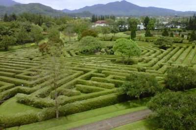 jasabuspariwisata-taman-bunga-nusantara-cianjur-untuk-alternatif-liburan-bersama-keluarga-taman-labirin