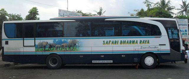 jasabuspariwisata-harga-tiket-lebaran-2017-bus-safari-dharma-raya-armada