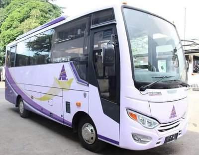 jasabuspariwisata-bus-pariwisata-ayuta-medium