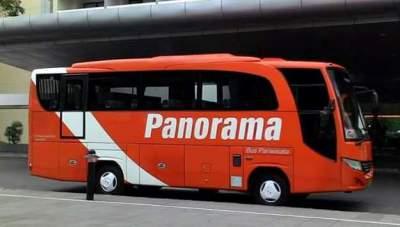 jasabuspariwisata-harga-sewa-bus-pariwisata-panorama
