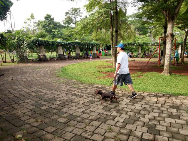 jasabuspariwisata-wisata-dan-olahraga-di-taman-tabebuya-hewan-peliharaan